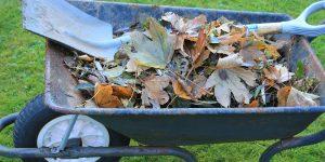 Améliorez vos déchets après le jardinage!