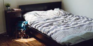 Les punaises de lit, tout ce qu'il faut savoir sur ces insectes
