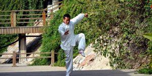 Faire du kung-fu dans le jardin